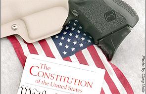 flaggunconstitution