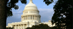Background Check Bill Moves in US Senate