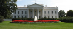 40 Gun Control Proposals on White House Desks